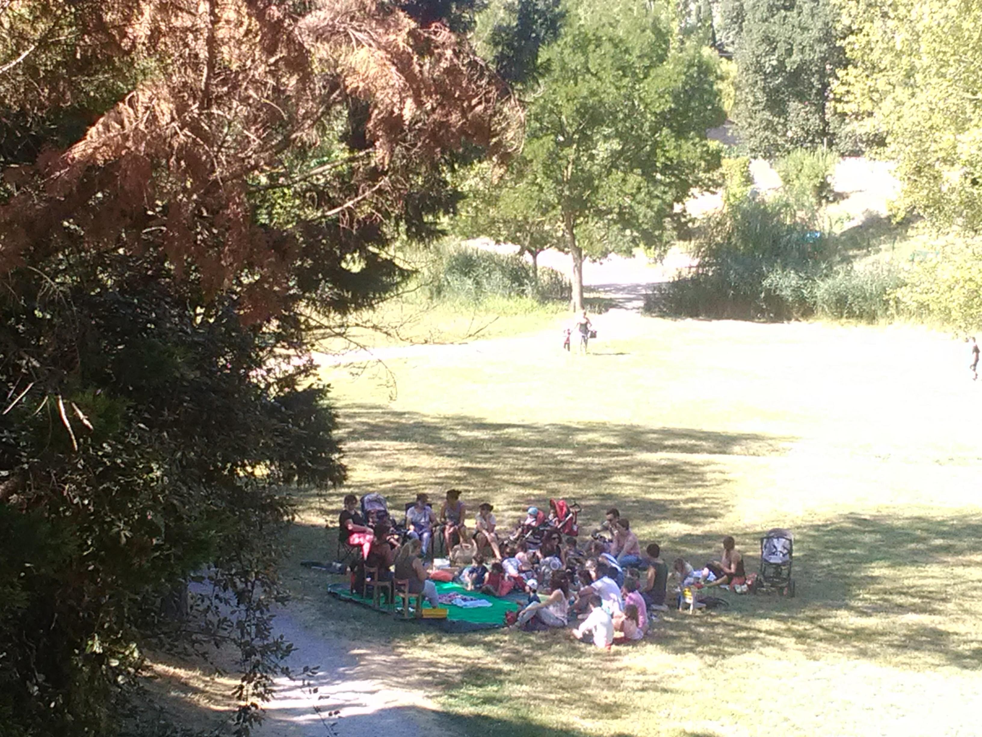 Lectures dans le parc |